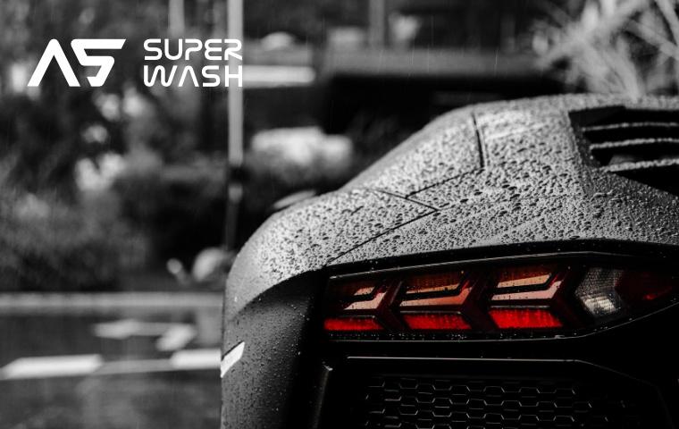 lambo_wash_ web_2